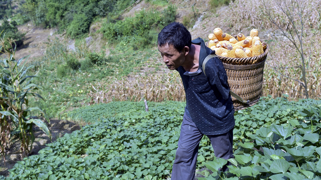 Since his father passed away 20 years ago and his siblings moved away Mr Zinyin has run his family farm alone. (AAP)