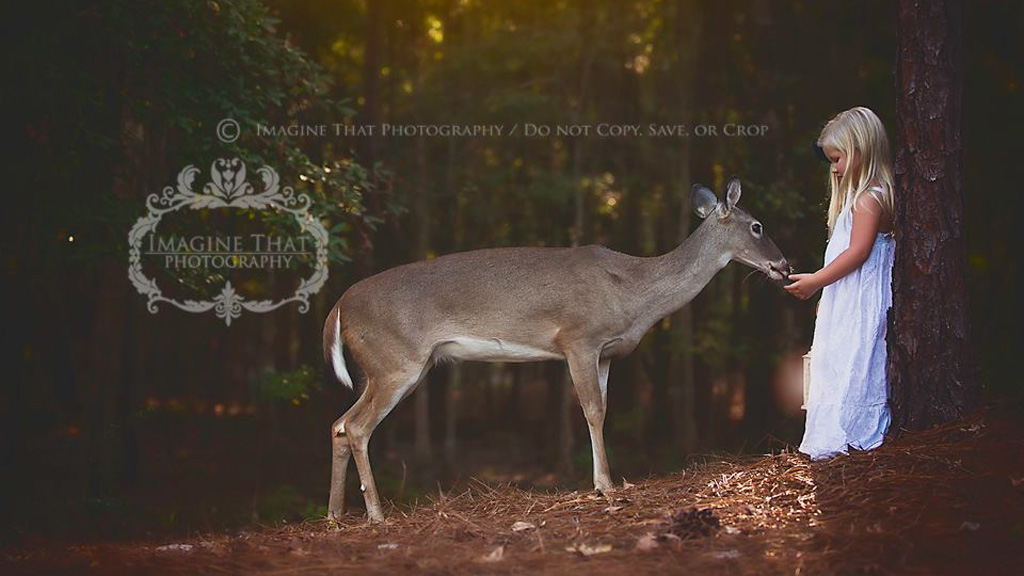 The deer, named Maggie, frequently strolls into photoshoots. (Imagine That Photography)