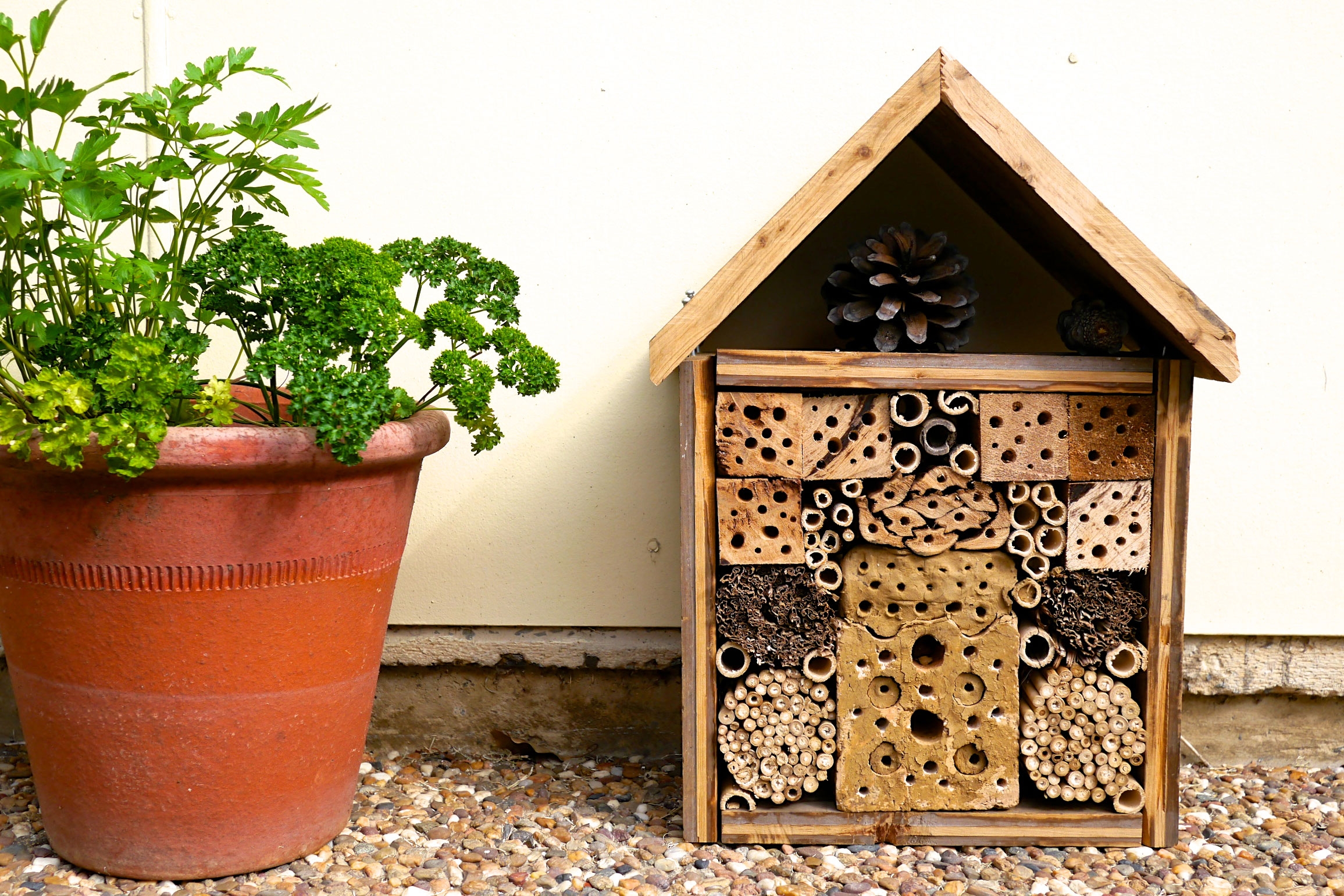 How To Make A Five Star Insect Hotel 9homes