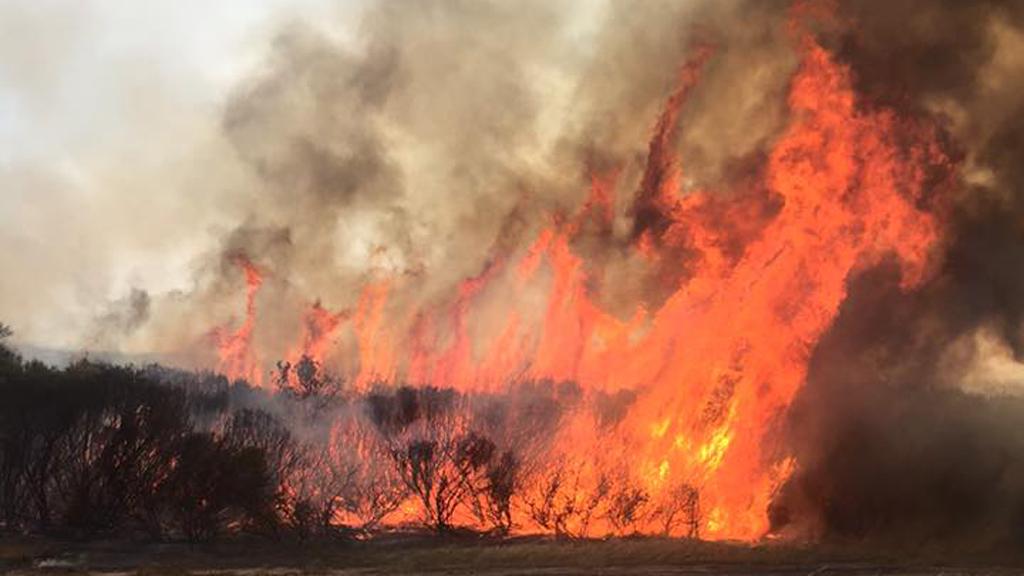 An earlier image of the Esperance bushfire. (9NEWS)