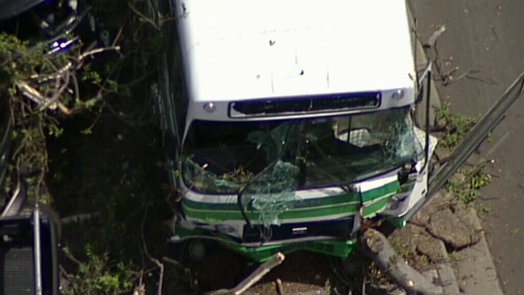 A bus has crashed into a tree on Gerrale Street, Cronulla. (9NEWS)