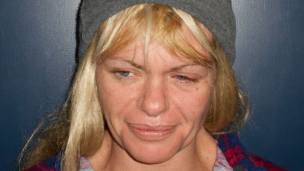 Police call for assistance in search for missing Mount Barker woman