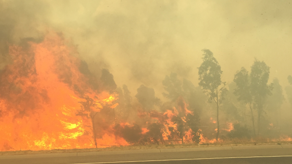 Wild grass fire forces closure of Hume Freeway at Epping