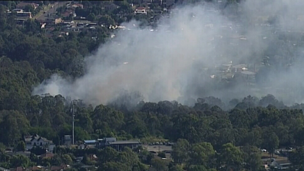A fire in Lansvale threatened multiple suburban homes. (9News)