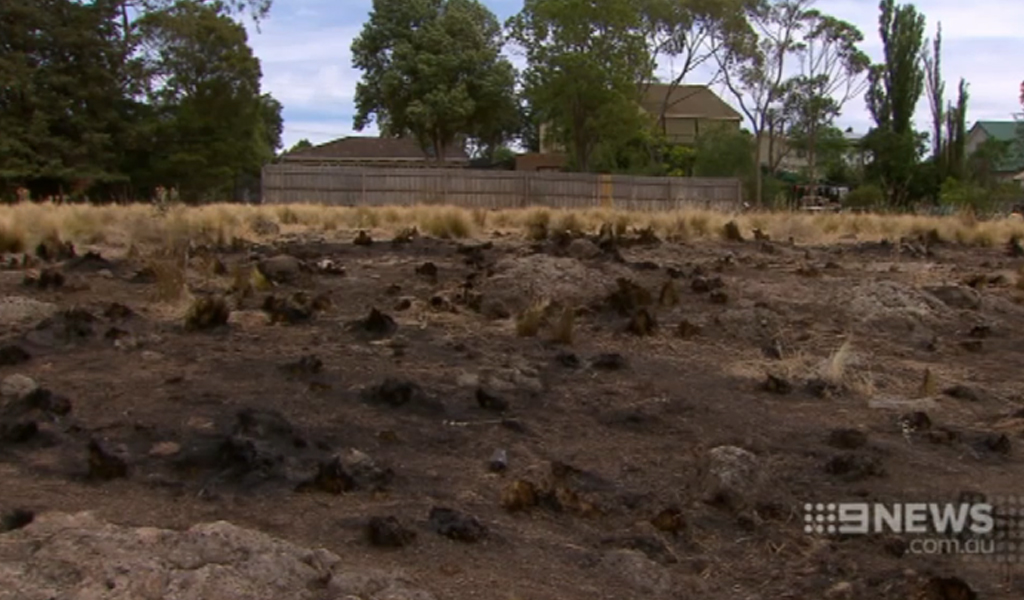Fireworks sparked a blaze that came within metres of Laura Pascoe's Sunbury home. (9NEWS)