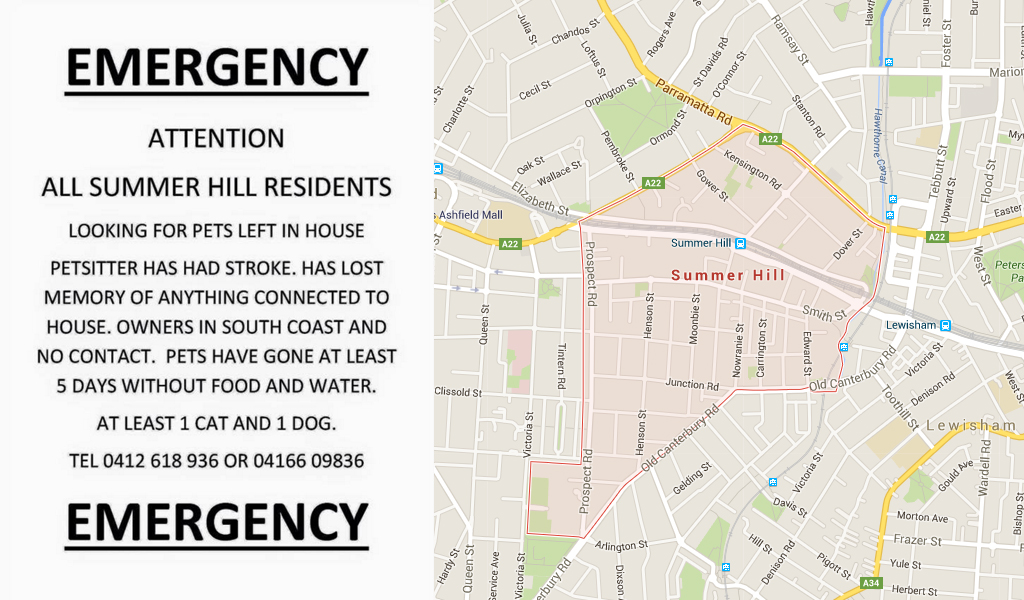 Search underway for two pets abandoned in Summer Hill home after their pet-sitter suffers stroke