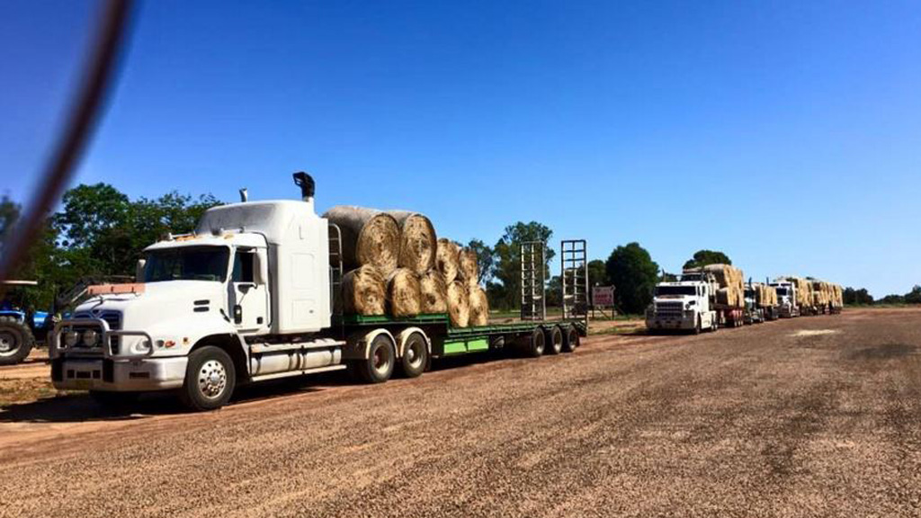"""""""Just a bloke with a truck."""" (Facebook)"""
