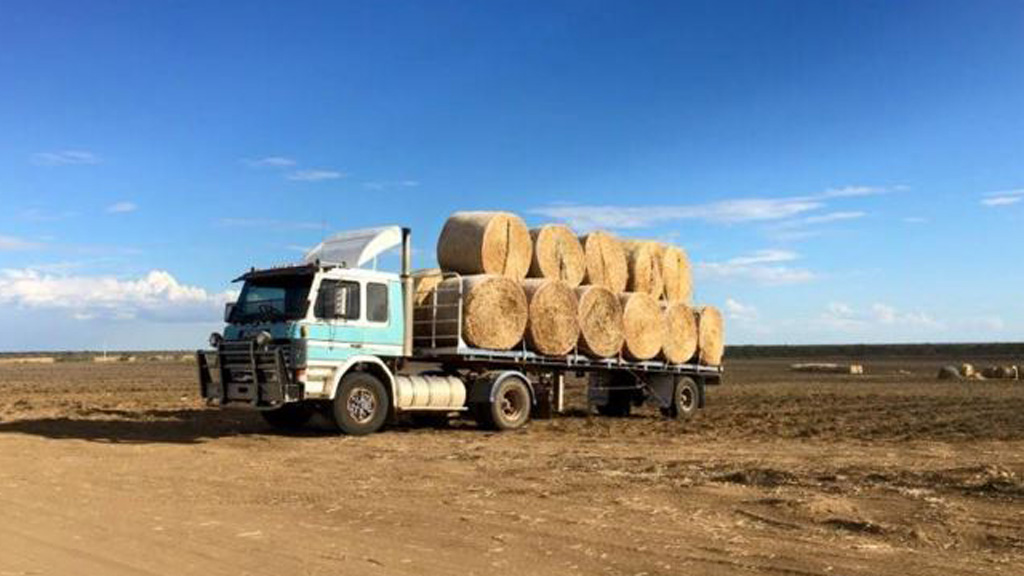 Almost 5000 hay bales were gathered. (Facebook)