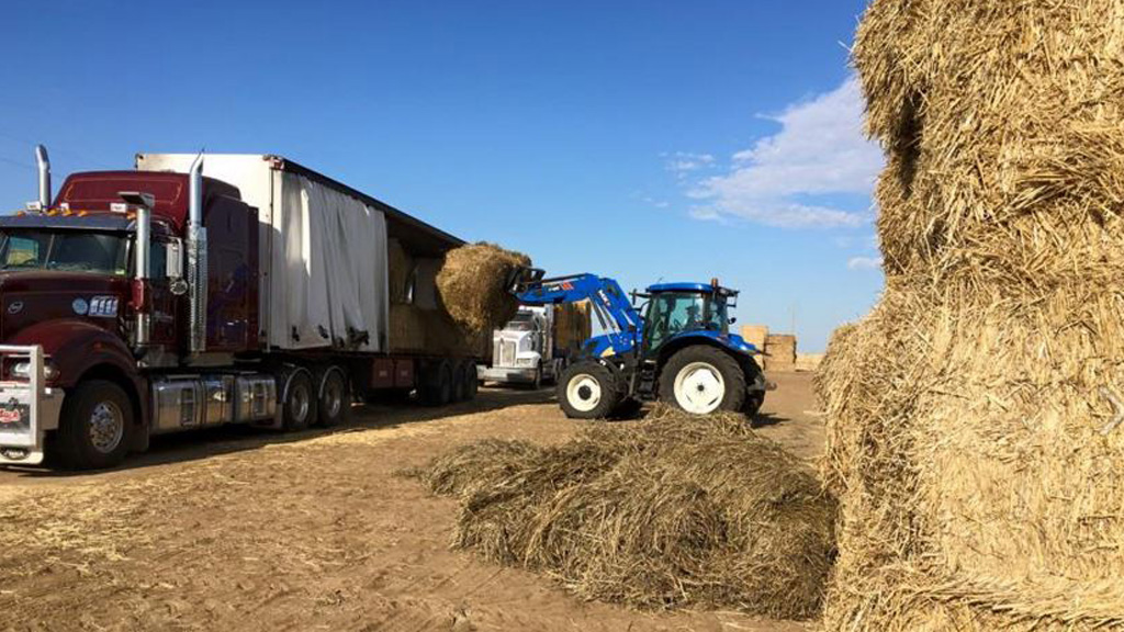 A tractor loads one of the trucks. (Facebook)