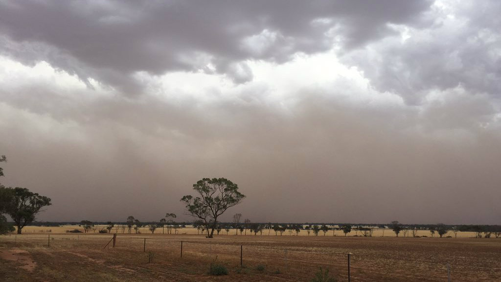 The dust cloud in the Mallee region this afternoon. (Twitter/Brett Hosking)