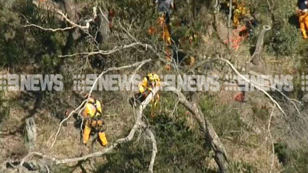 Woman and dog rescued after they fell from cliff in Mount Eliza