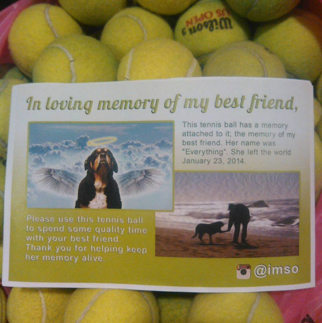 Man sends tennis balls to dog owners in honour of his late pup