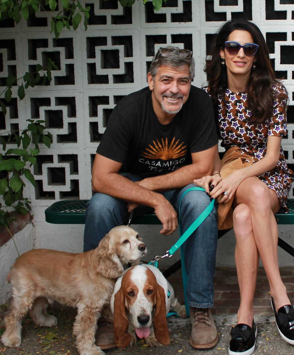 George and Amal Clooney pose with their bassett hound, Millie, center, and cocker spaniel, Louie. (AAP)