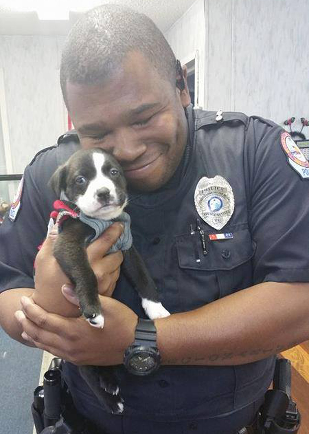 The tiny pup was left outside the shelter in a basket. (Panhandle Animal Welfare Society)