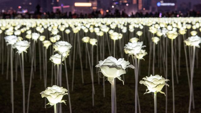 IN PICTURES: Hong Kong plays host to romantic garden of rose lights