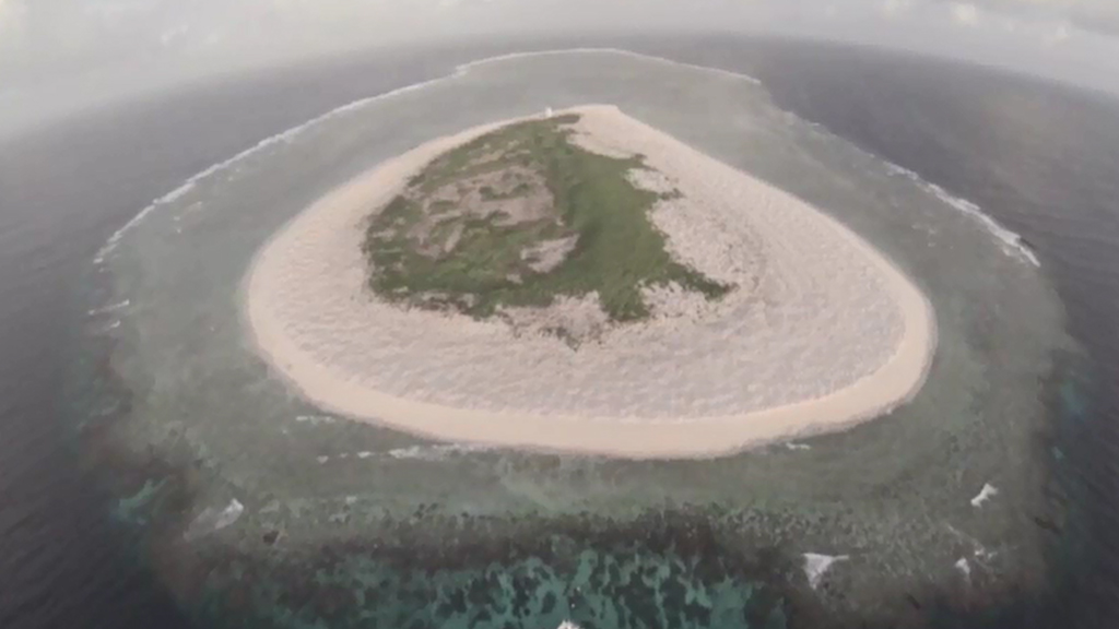 Drones enlisted in fight to conserve green sea turtle nesting site on Great Barrier Reef's Raine Island