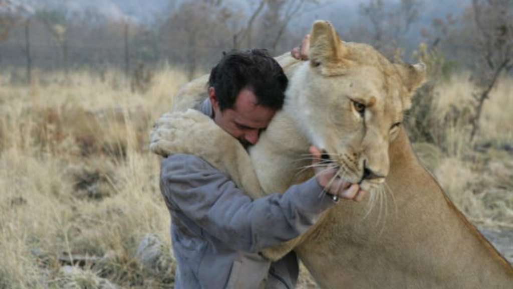 Astonishing images show love between 'lion whisperer' and his big cats