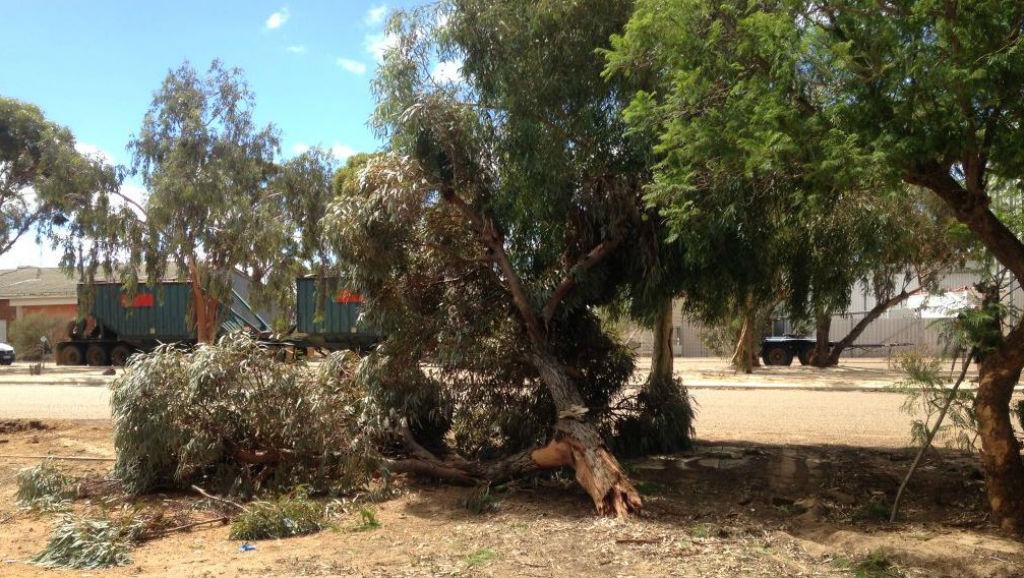 Three men dead after Wheatbelt ute crash, east of Perth