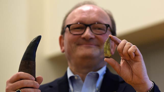 Hans-Dieter Sues, chair of the Department of Paleobiology at the Smithsonian's National Museum of Natural History, holds up a tooth of a new dinosaur, Timurlengia euotica. (AAP)