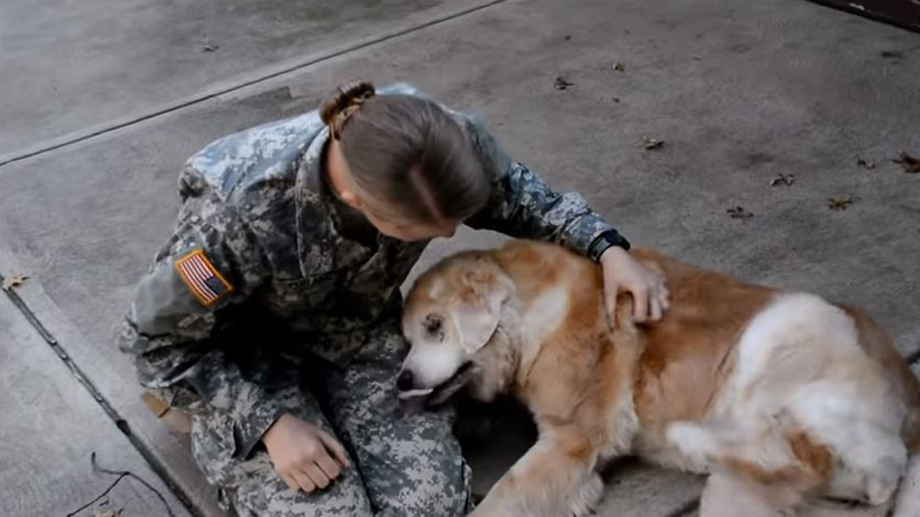 US soldier reunited with her elderly dog after leaving him for the first time to complete military training