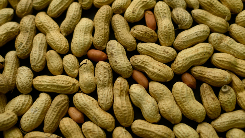 Feed babies at risk of allergies peanuts, say experts