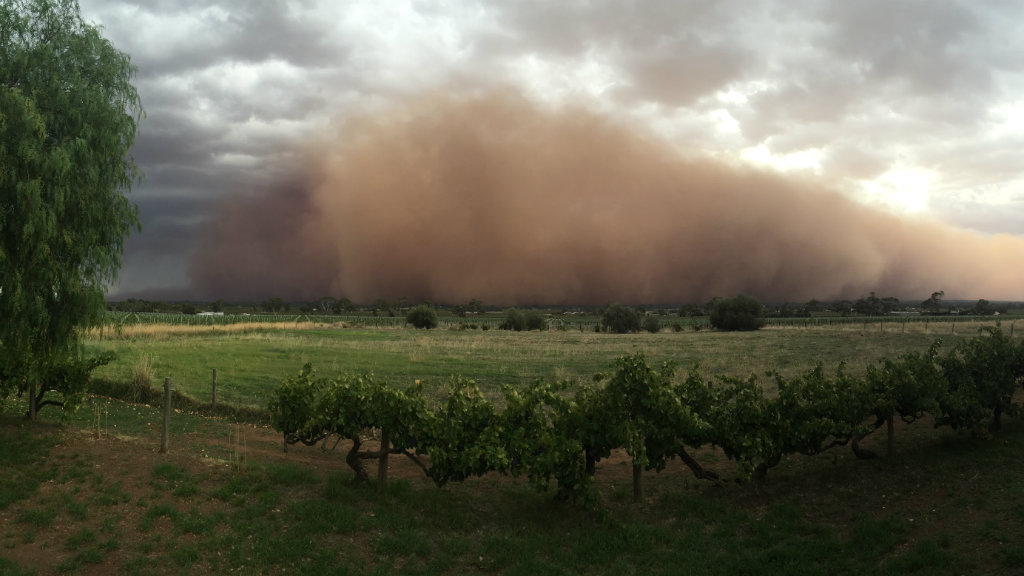 The storm as it moved through the Barossa Valley. (Kristy Edwards/Supplied)