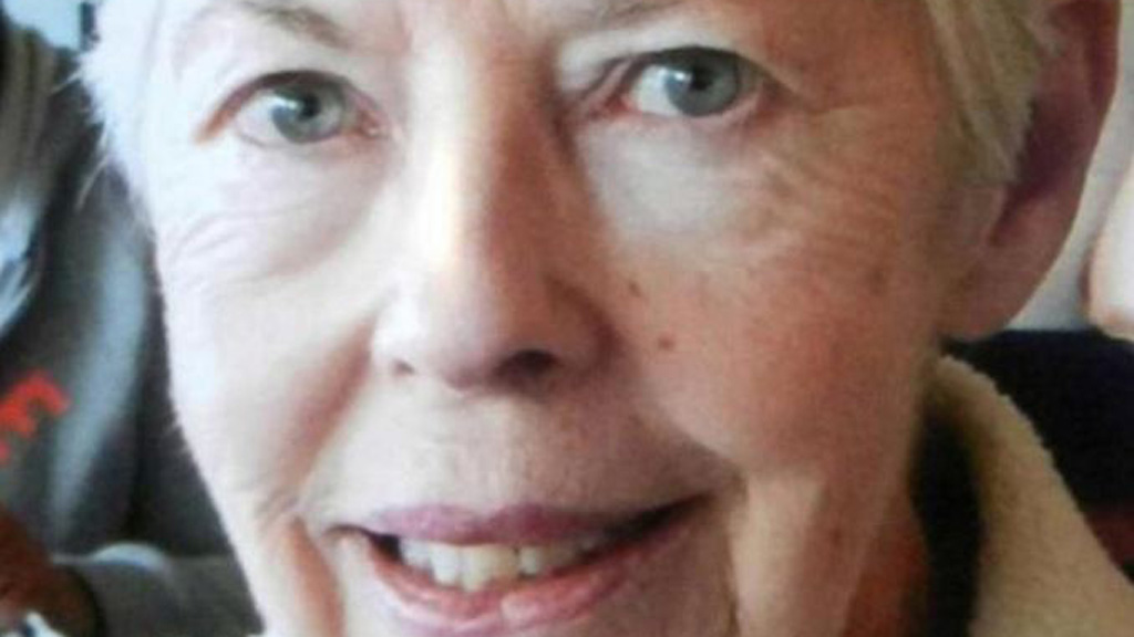 Rescuers still looking for lost NSW woman
