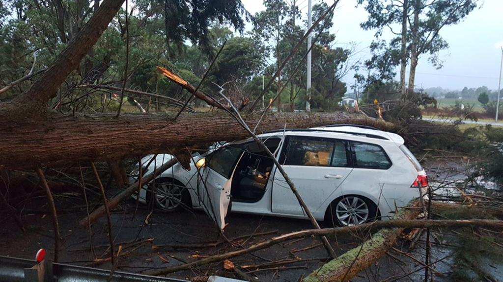 SES bombarded by 1100 calls for help after Victorian storms