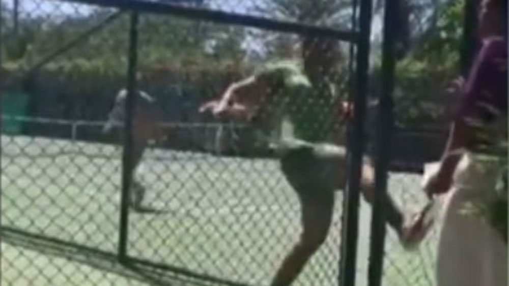 Irate Iranian tennis player chases umpire