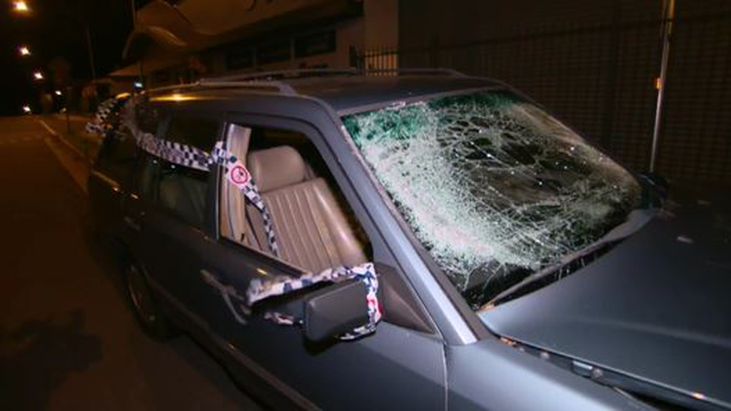 Man arrested after ramming police car during Blue Mountains rampage