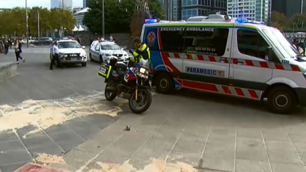 The woman was taken to the Alfred Hospital in a serious condition. (9NEWS)