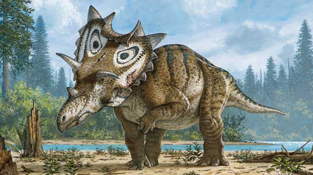 Judith: The new dinosaur species discovered by accident