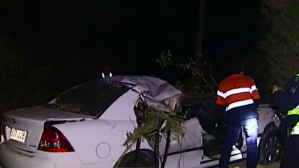 Elderly man killed in accident caused by carnival ride in Brisbane's south-east