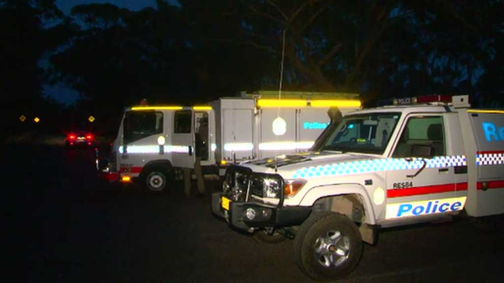 Tourist rescued after Blue Mountains fall