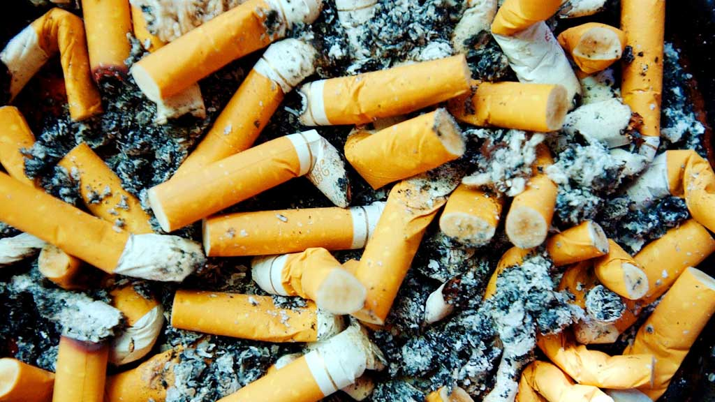 Aussie scientist discovers genius use for cigarette butts