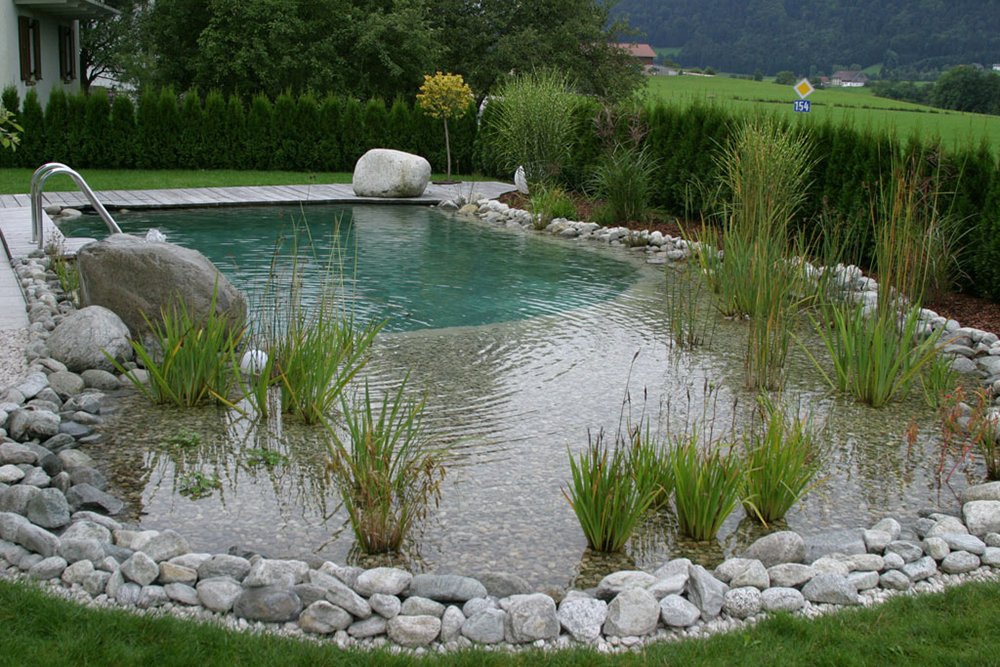 Natural Pools Are Making A Come Back