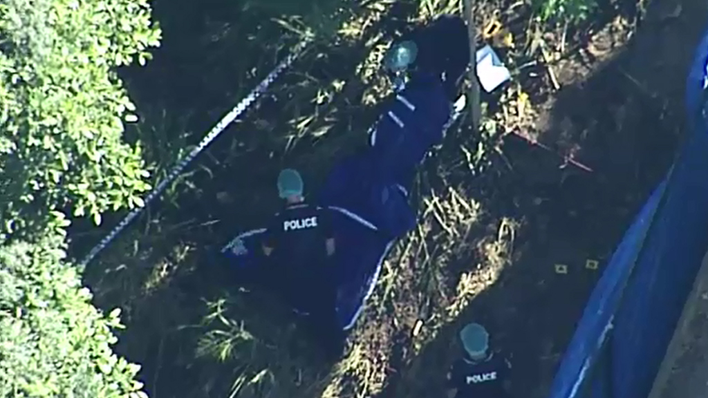 Police excavated the site. (9NEWS)