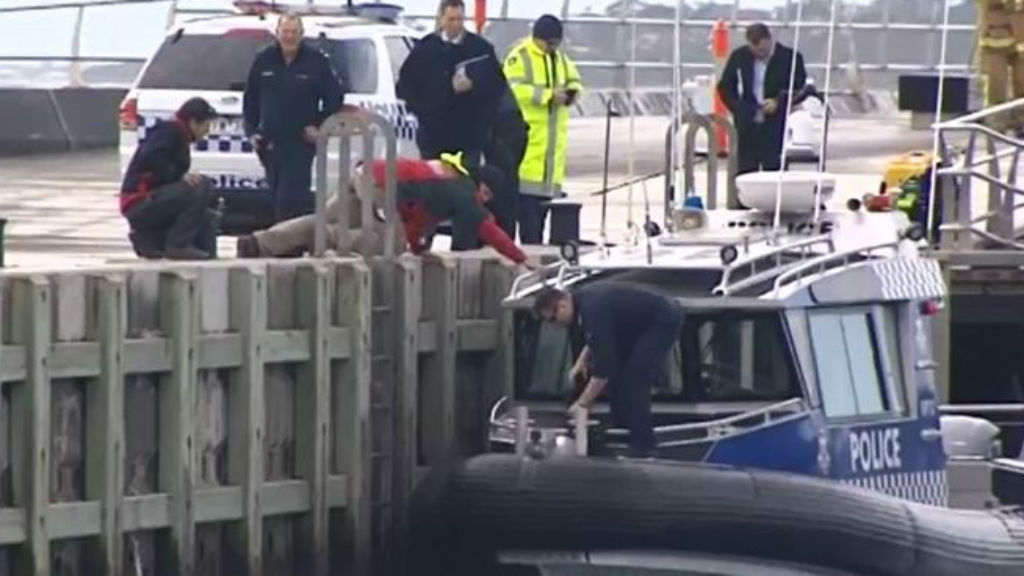 It's believed the man was dead when witnesses rushed to assist. (9NEWS)