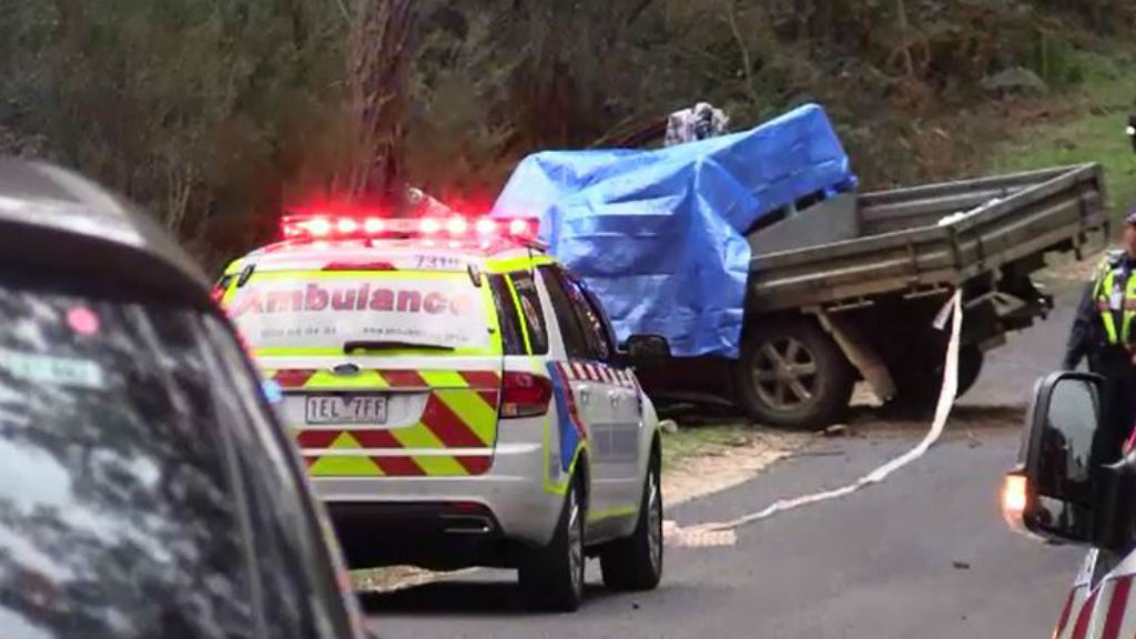 Police are investigating the circumstances of the crash. (9NEWS)