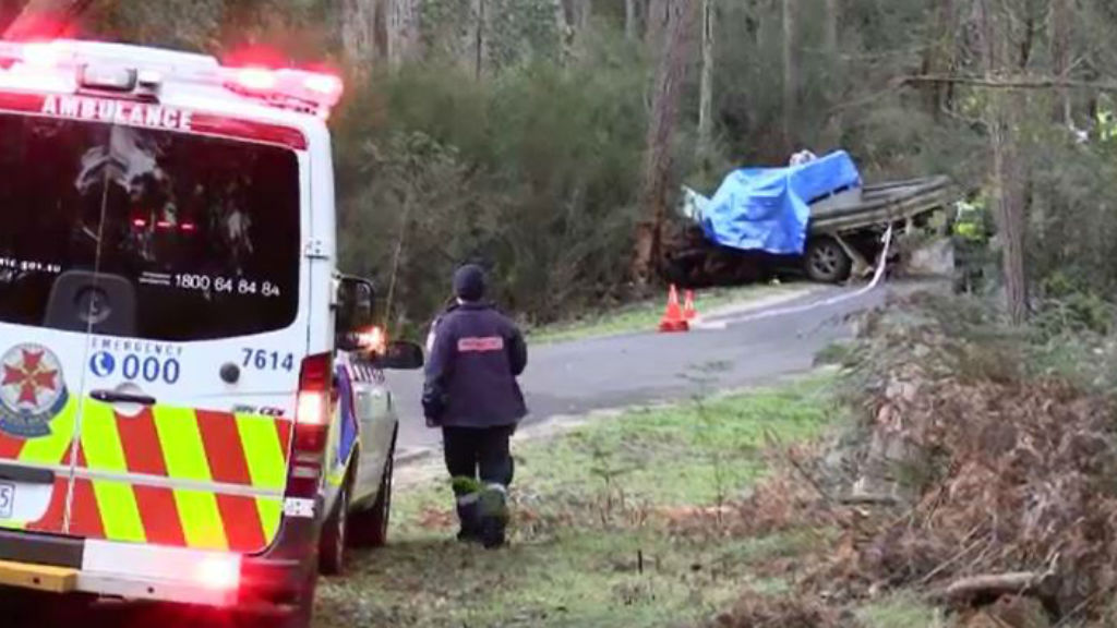 Two men died and a third is in a serious condition. (9NEWS)