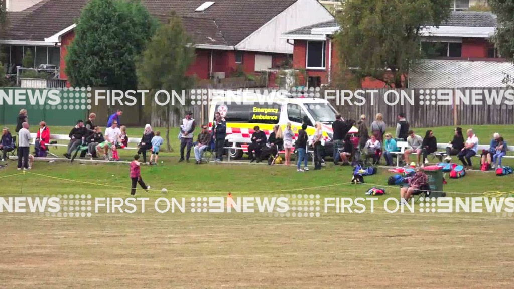 The boy was treated at the scene for facial injuries and was later taken to hospital. (9NEWS)