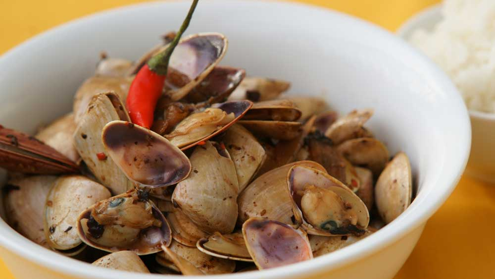 Pipis and black bean sauce. Image: Supplied