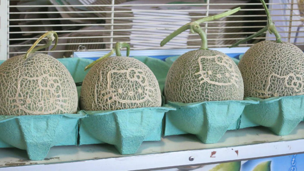 Hello Kitty melons to go on sale for $69