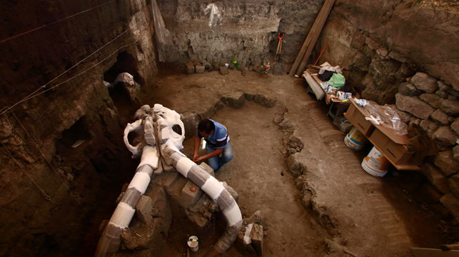 Remains of mammoth uncovered in Mexico
