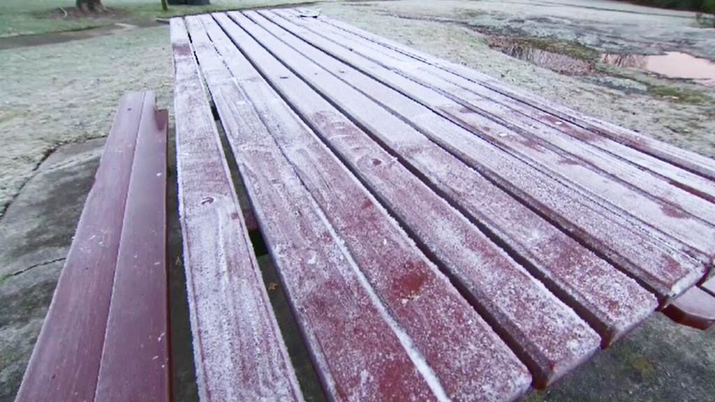 Frost in Stanthorpe. (9NEWS)