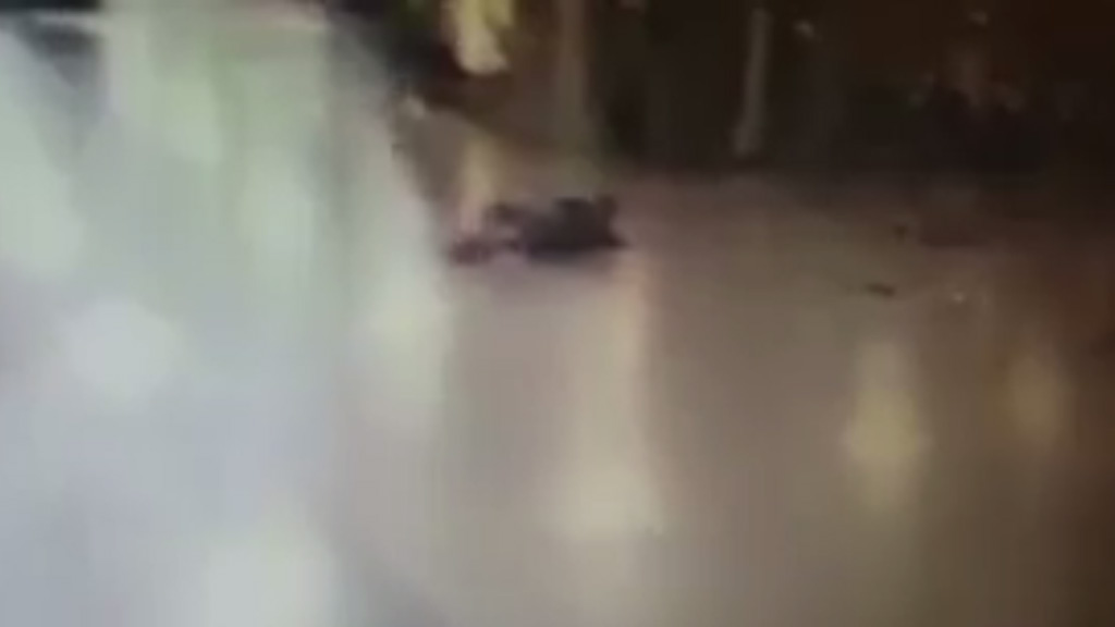 A still image taken from footage posted online purports to show one of the attackers on the ground after being shot by authorities, shortly before the explosives were detonated.