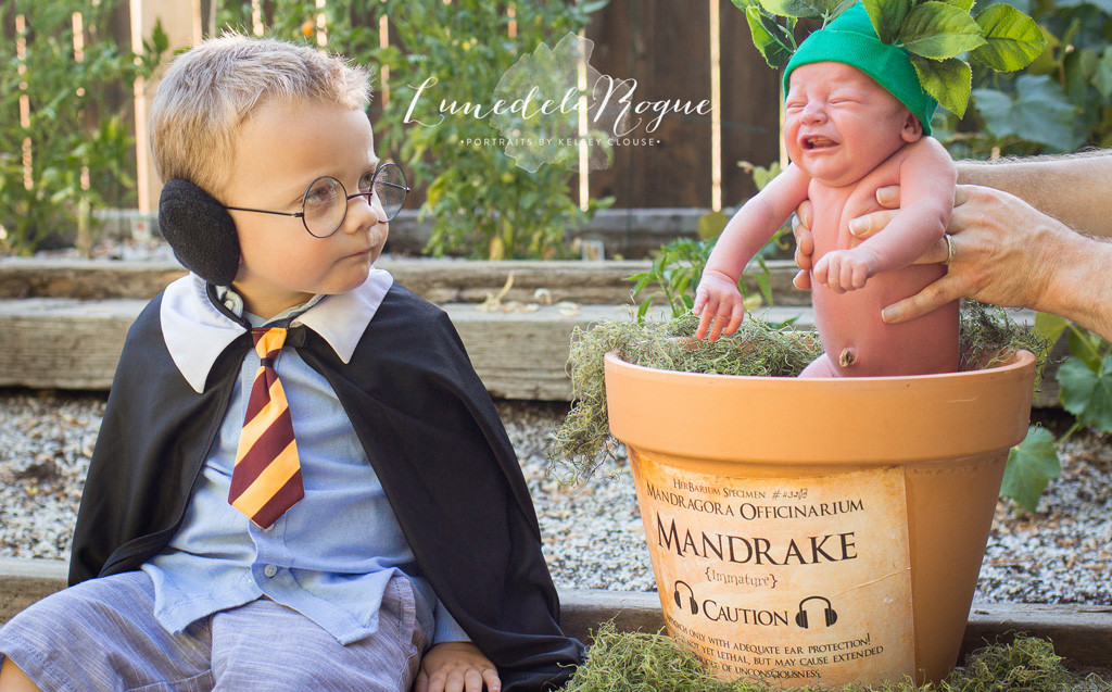 Married Harry Potter fans use young sons to recreate scenes from the series