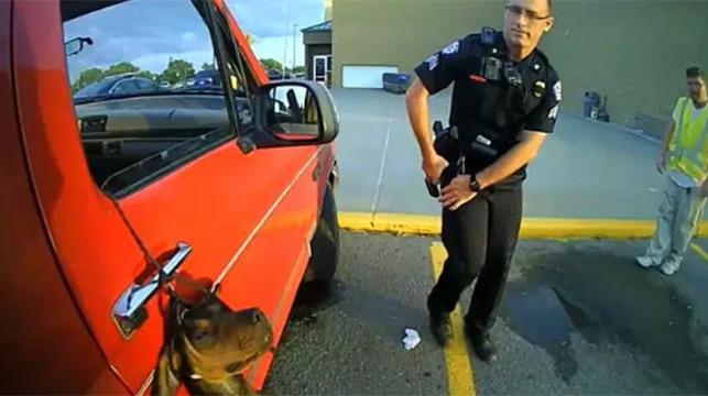 Arkansas cops save hanging dog after shoplifting collar