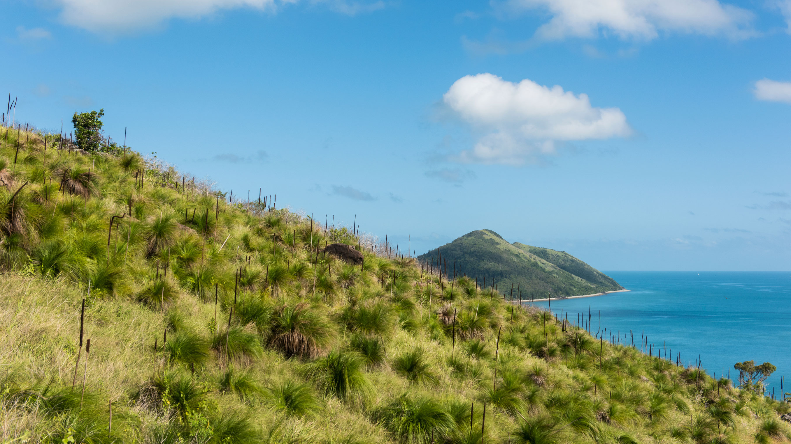 South Molle Island Backpackers