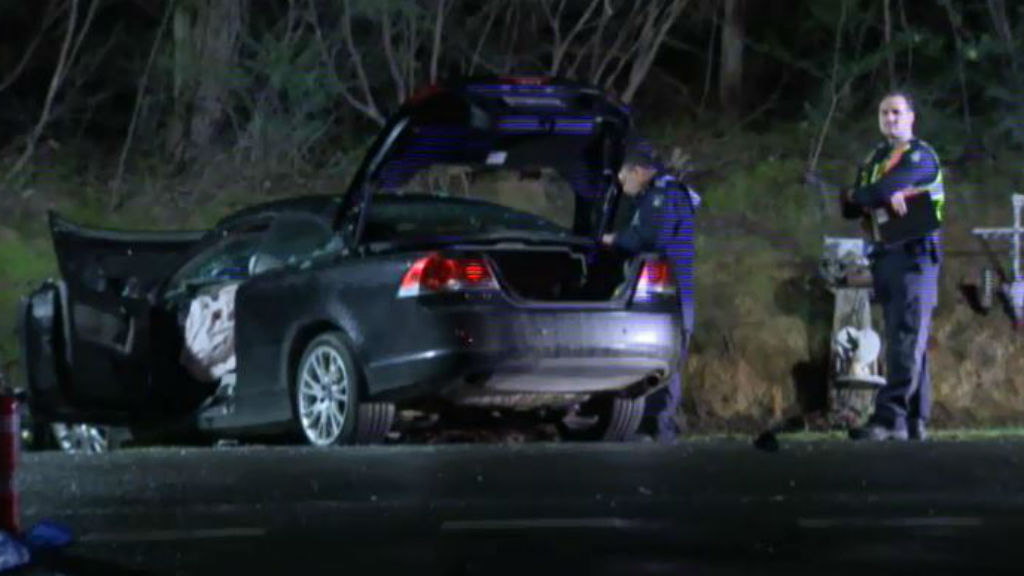 The victim suffered head injuries in the attack. (9NEWS)